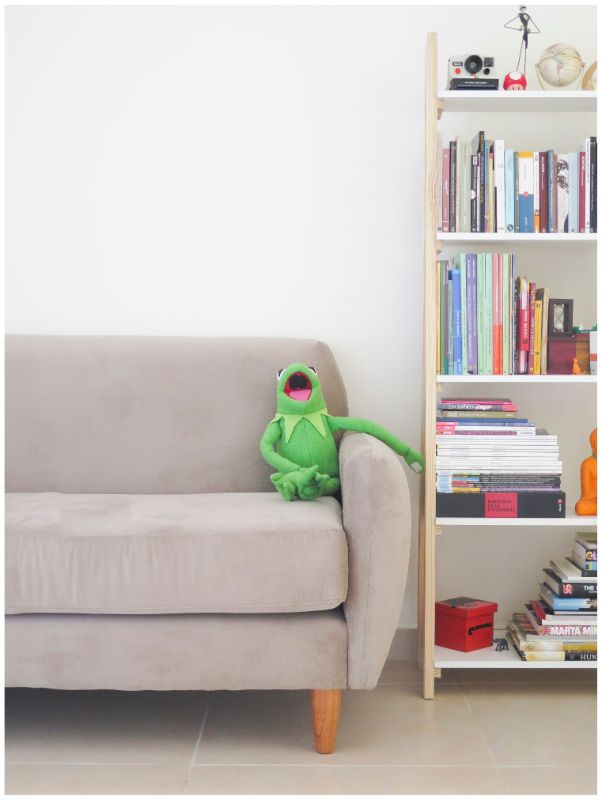 Toy frog on a sofa, laughing at an entertaining person, who would be a good stage hypnotist