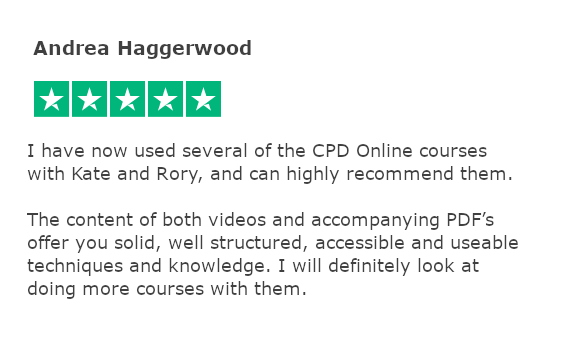 Trustpilot review - andrea haggerwood